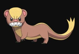 Más de 50.000 fans eligen a su Pokémon preferido y hubo 4 que no recibieron ningún voto